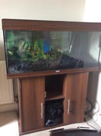 3.5ft fish tank and cabinet