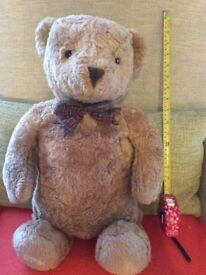 Lovely teddy bear needing a nice home