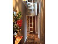 Ramsay Ladder for loft