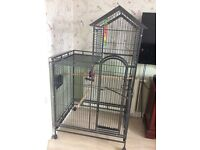 Parrot cage in excellent condition no room in house for it