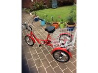 "12"" Red Freedom Tricycle . Excellent condition."