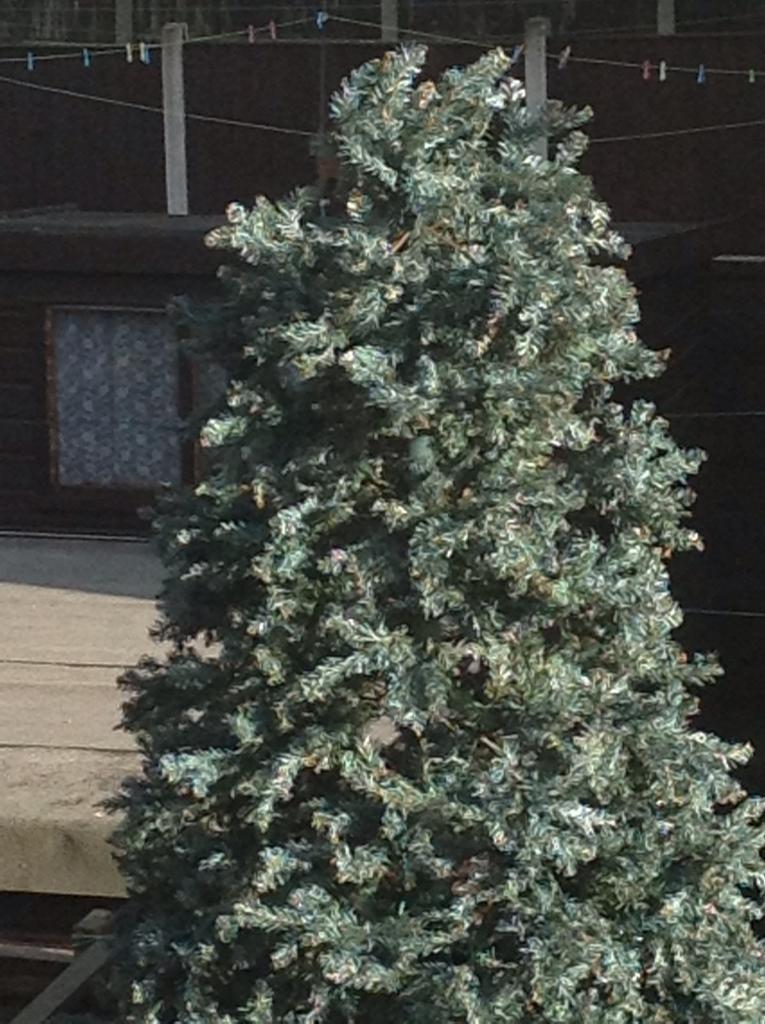 12 foot outdoor Xmas tree with large boubles . ( now reduced )