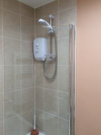 Bath/Shower Screen - excellent condition