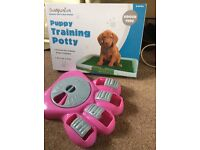 Puppy training mat and toy