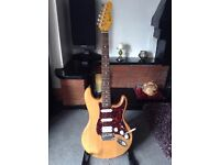 Wesley Made Fender Style Electric Guitar