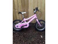 Kids Child's Honey Ridgeback Bike.