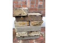 FREE Approx 40 building concrete blocks (1 year old)