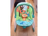 Bright starts peek-a-zoo chair