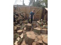 Free hardwood logs required