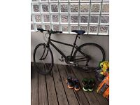 Bianchi Bike, Rarely Used