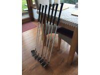Wilson graphite golf clubs