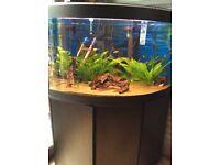 Aquarium Fluval corner with stand