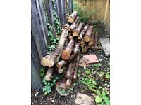 Large logs and trimmed branches, free to collector