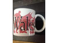 Starbucks 'Cymru' City Mug - Large