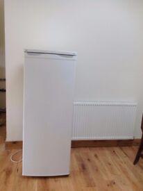 Proline Freezer (stand alone)