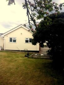 Nice room in house christchurch (detached bungalow)