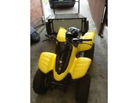 T. rex. 100cc. Quad. Good condition hardly used . Trailer to suit. £400.