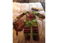 Ninja turtle dress up age 5-6