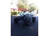 Suzuki ltr 450 not raptor quadzilla Apache yfz quad