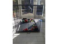 Large Dog Crate (foldable)