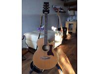 Tanglewood -145sc