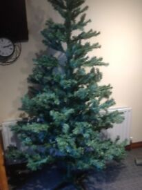 7 ft Christmas tree blue artic fir