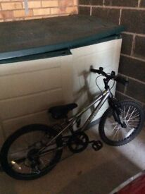 Boys Grey Apollo Bicycle