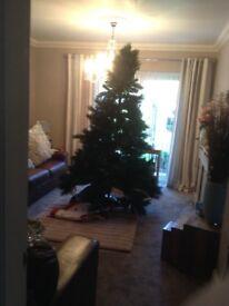 Christmas Tree 8'