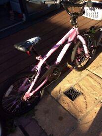 Dulcis Avigo Freestyle bike