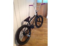 Bmx custom with a we the people trust frame , and a federal freecoaster on 240 tyres , sweet