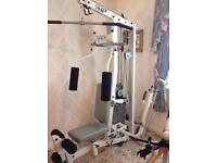 Hoist h310 multi gym