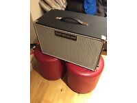 Barefaced Retro Two10 Bass Cab w/Cover