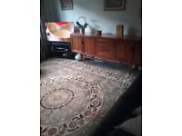 Large Rug - light green - 10' x 13' Open to offers