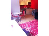 Modern studio flat for sale in London Colindale NW9