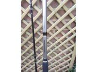 Daiwa Bass fishing rod