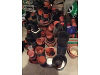 Flower pots and various seed trays