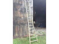Rustic Fruit Ladder