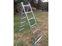 Combination Ladder - As New