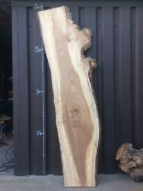 Elm slab, kiln dried, planed and sanded both faces