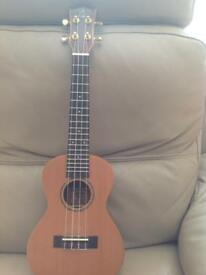 Snail ukulele swop or sell