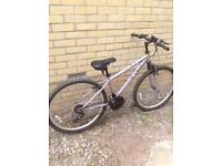Apollo jewel ladies/teen mountain bike