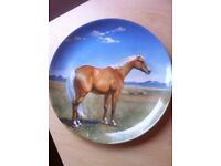 Spode Limited Edition Plates - The Noble Horse collection series - Excellent Condition