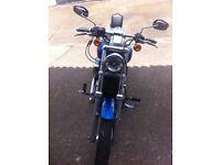 Harley XL883c sportster