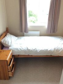 Single room to rent out