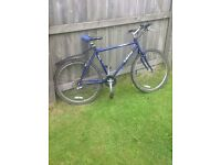Trek Mountain Bike, 21 gears, lights front and back plus a free never been used helmet.