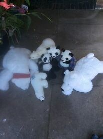 Cuddly toys selling lot