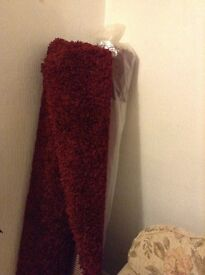 2 brand new shag pile rugs for, 160cm X 230cm £60 each or £100 for 2 l. Buyer collects