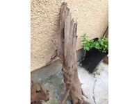 Driftwood for aquarium or reptile