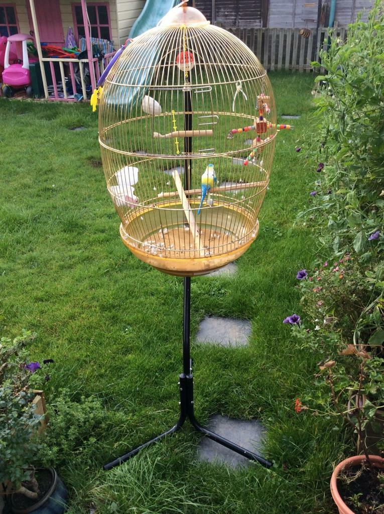 Large budgie bird cage with stand. Bargain!