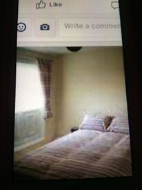 Double room available (single occupancy)